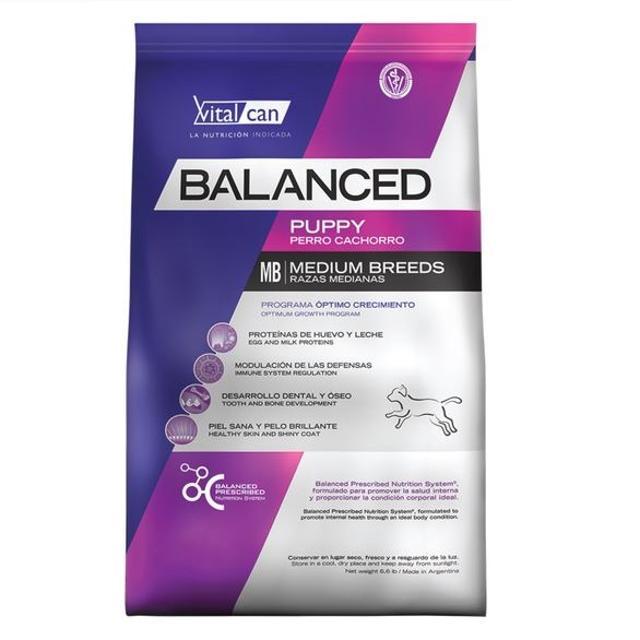 20Kg - Cachorro Raza Grande / Balanced