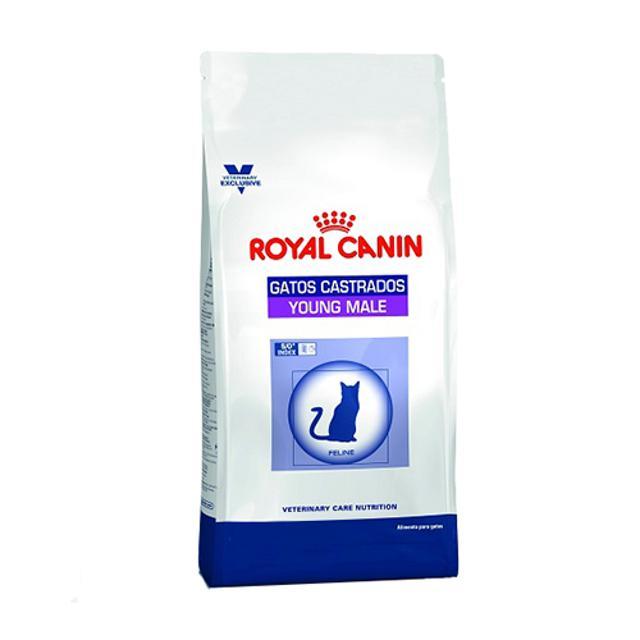 3.5Kg - Gato Castrado Young Male / Royal Canin