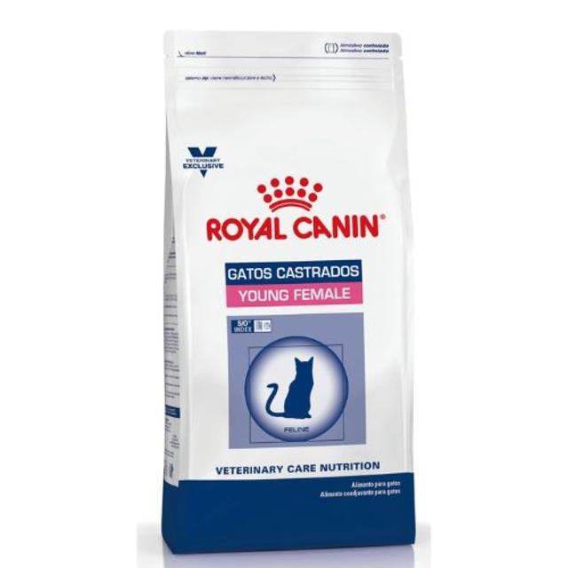 3.5Kg - Gato Castrado Young Female / Royal Canin