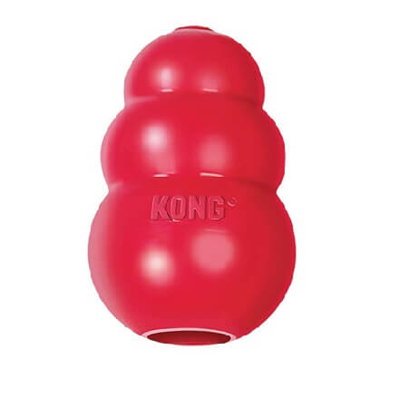 Grande  - Classic  / Kong