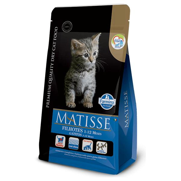 2Kg - Gato Gatito / Matisse