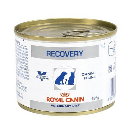 195gr - Recovery Para Gatos y Perros / Royal Canin