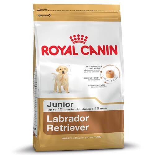 12kg - Labrador Retriever Junior / Royal Canin