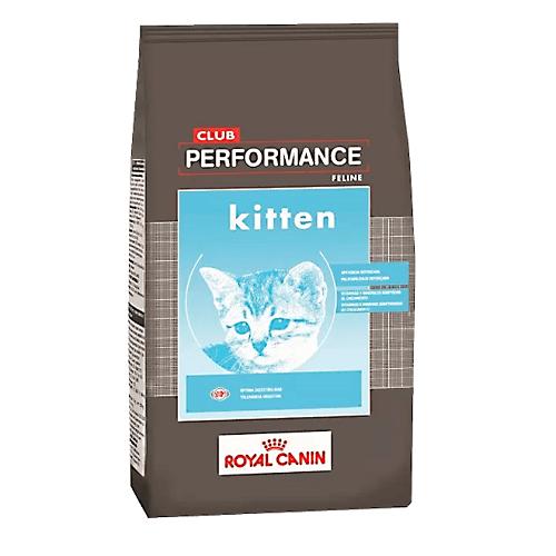 7.5kg - Kitten Club Performance / Royal Canin