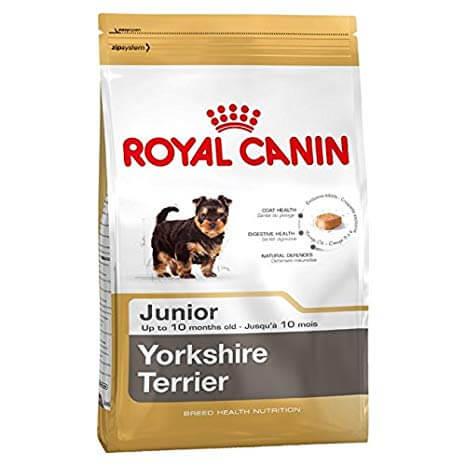 3kg - Yorkshire Terrier Junior / Royal Canin