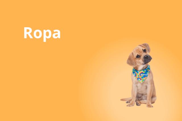 Perro - Ropa