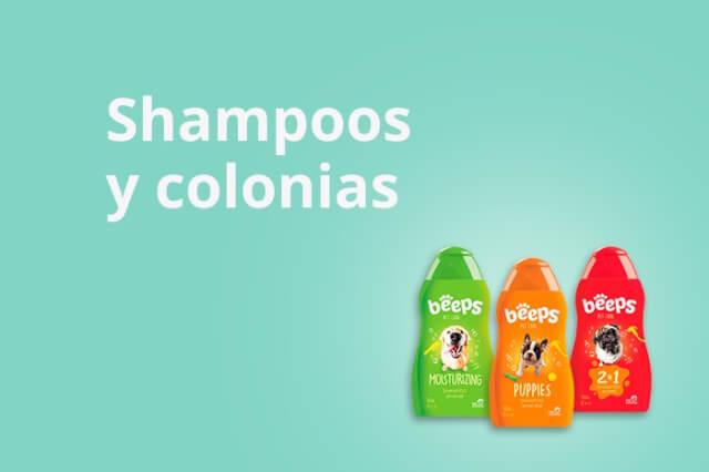 Shampoos y Colonias