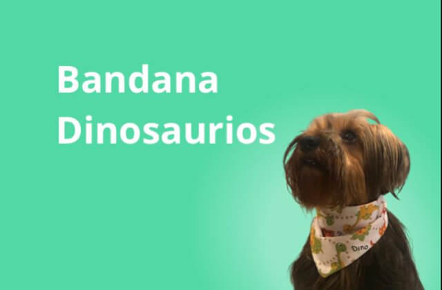 Modelo Dinosaurio