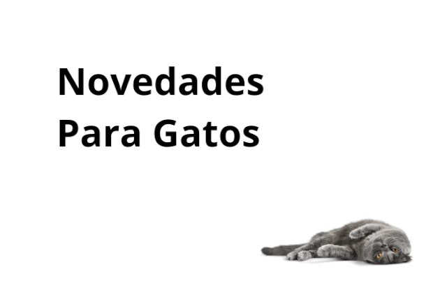 Novedades Para Gatos