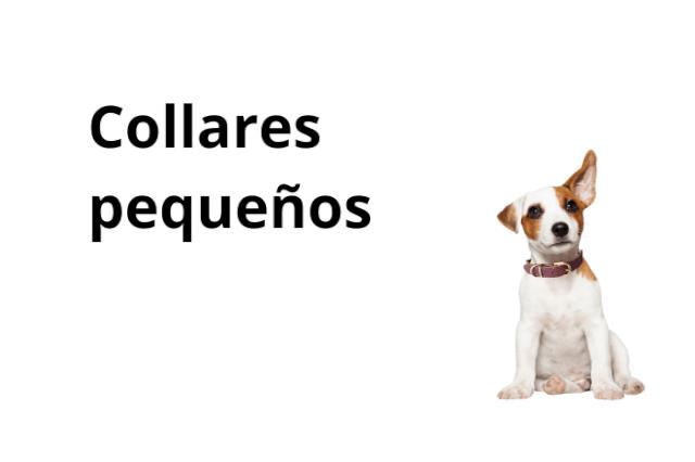 Collares Perro Pequeno