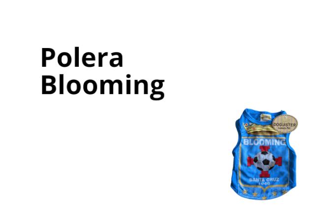Polera Blooming