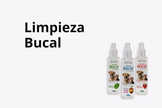 Limpieza Bucal