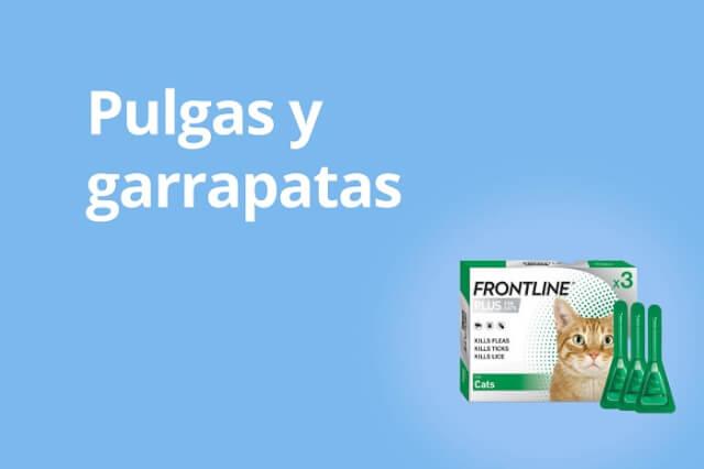 Pulgas y Garrapatas - Gato