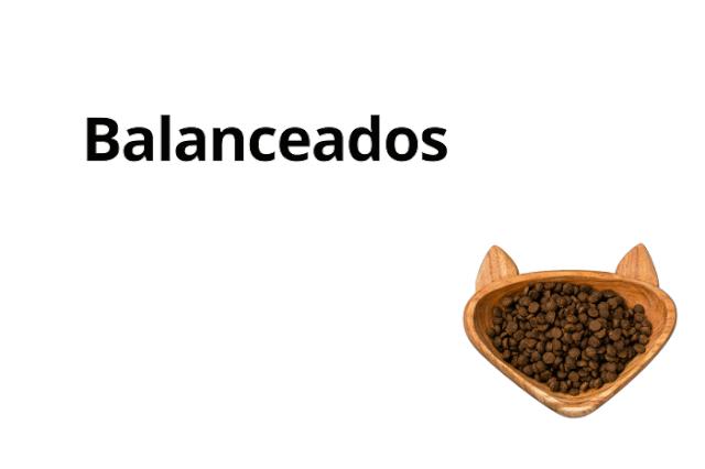 Gato - Alimento Seco