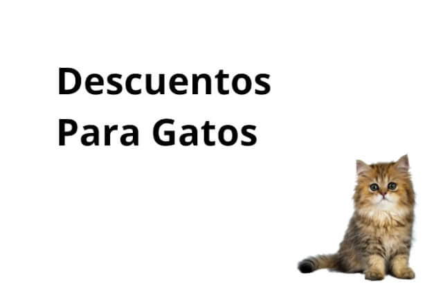 Descuentos Para Gatos