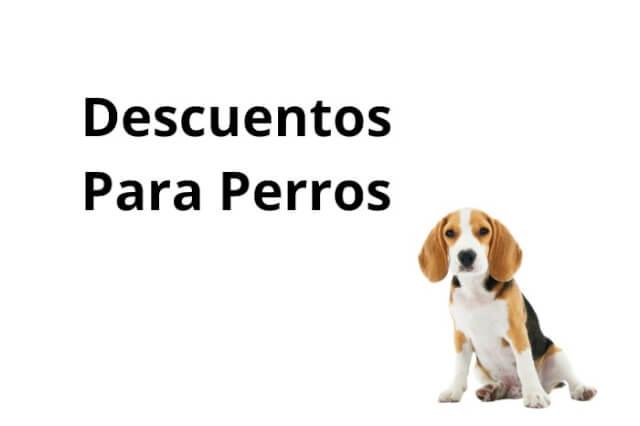 Descuentos Para Perros