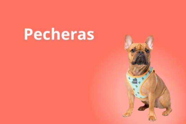 Perro - Pecheras