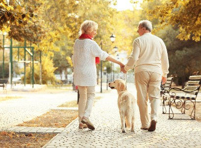 senior couple walking their dog on a sunny fall day