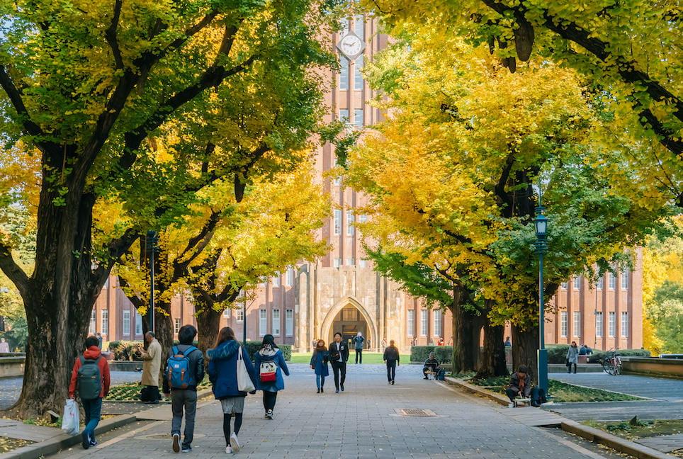 【全国65校】大学別アドミッションポリシーまとめ【大学選び・推薦対策】