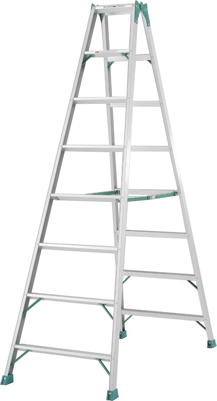 Golden Eagle Single Side Aluminium Ladder