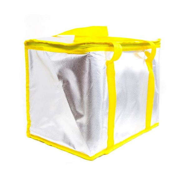 Aluminium Foil Insulated Bag / Chiller Bag (small Size)