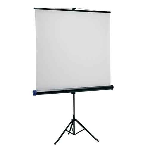 Quartet Portable Tripod Screen