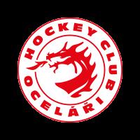logo team