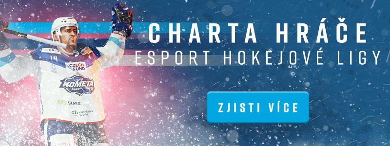 Charta hráče Esport hokejové ligy