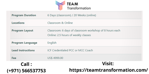 Team-Coaching-Certification-Course-at-Team-Transformation.png