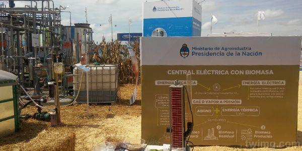 La biomasa es energía proveniente de fuentes no fósiles.