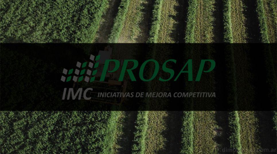 El Programa para impulsar al sector agrícola está bajo la órbita del Ministerio de Agricultura, Ganadería y Pesca.