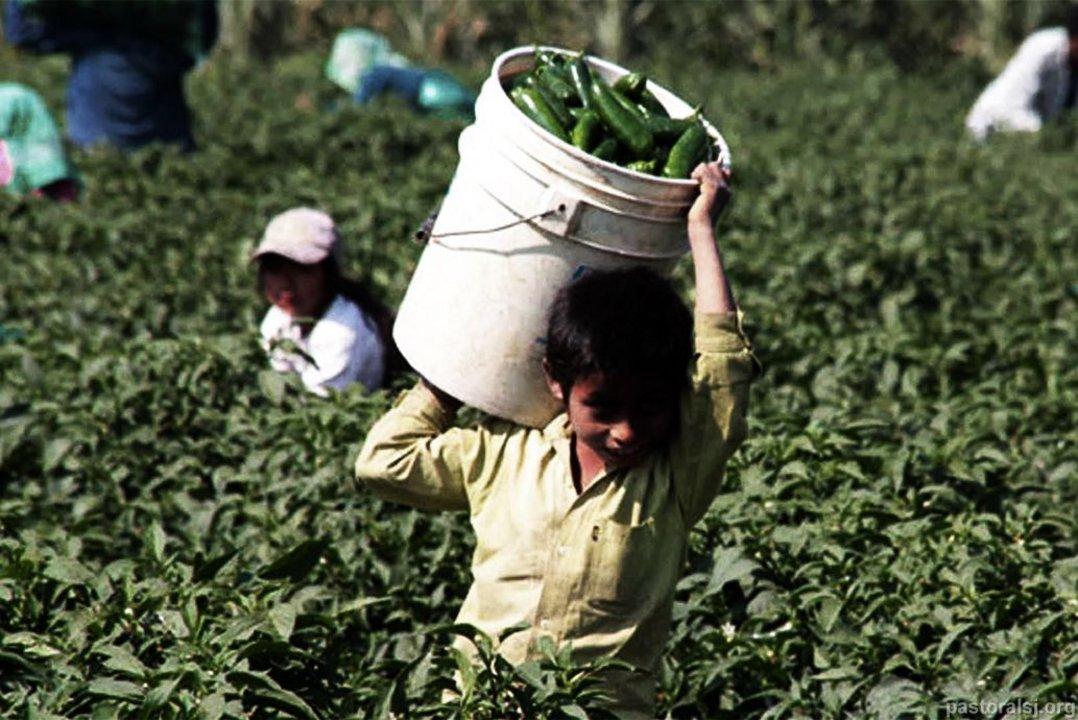 Según una encuesta que realiza la OIT, en Argentina hay más de 1.100.000 menores de 18 años que trabajan.