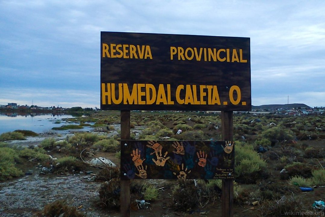El humedal Caleta Olivia es uno de los más contaminados de la Provincia de Santa Cruz.