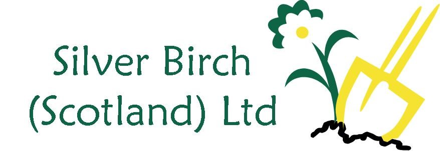 Silver Birch (Scotland) Ltd