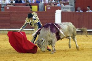 Castella, poderoso. Foto: Ernesto Naranjo.