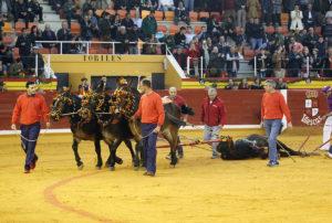 Vuelta al ruedo de un toro de José Vázquez.