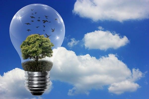Anie rinnovabili pixabay