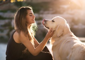 3 Things to Consider Before Getting a Dog