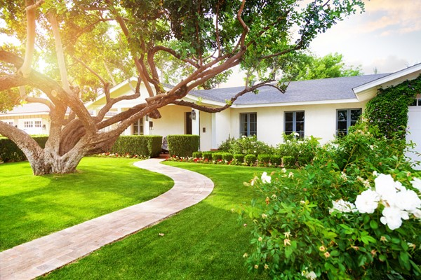 5 Ridiculously Easy and Affordable Curb Appeal Ideas