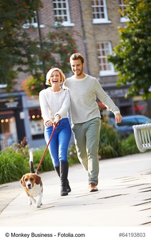 How To Tell If You're Moving To A Dog-Friendly Place