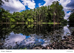 The Best Outdoor Adventures In Florida