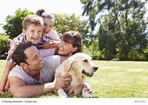 Finding Dog-Friendly Neighborhoods