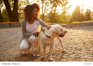 Owning a Dog Brings Companionship and Security