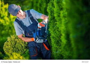 Hire a Professional Landscaper Before You List Your House