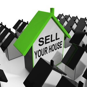 Key Traits of a Seller's Market