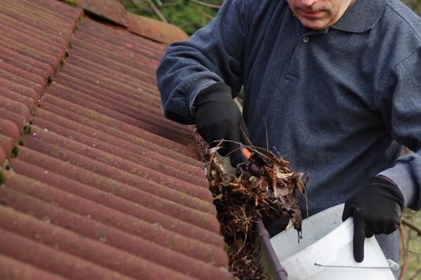 5 DIY Skills Every Homeowner Should Have