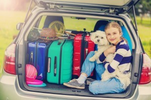 How to Care for Your Pets When You Go on Vacation