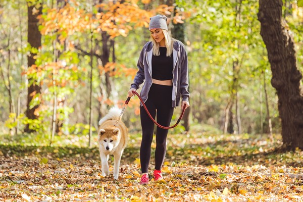 Choosing the Right Pet for Your Home & Lifestyle