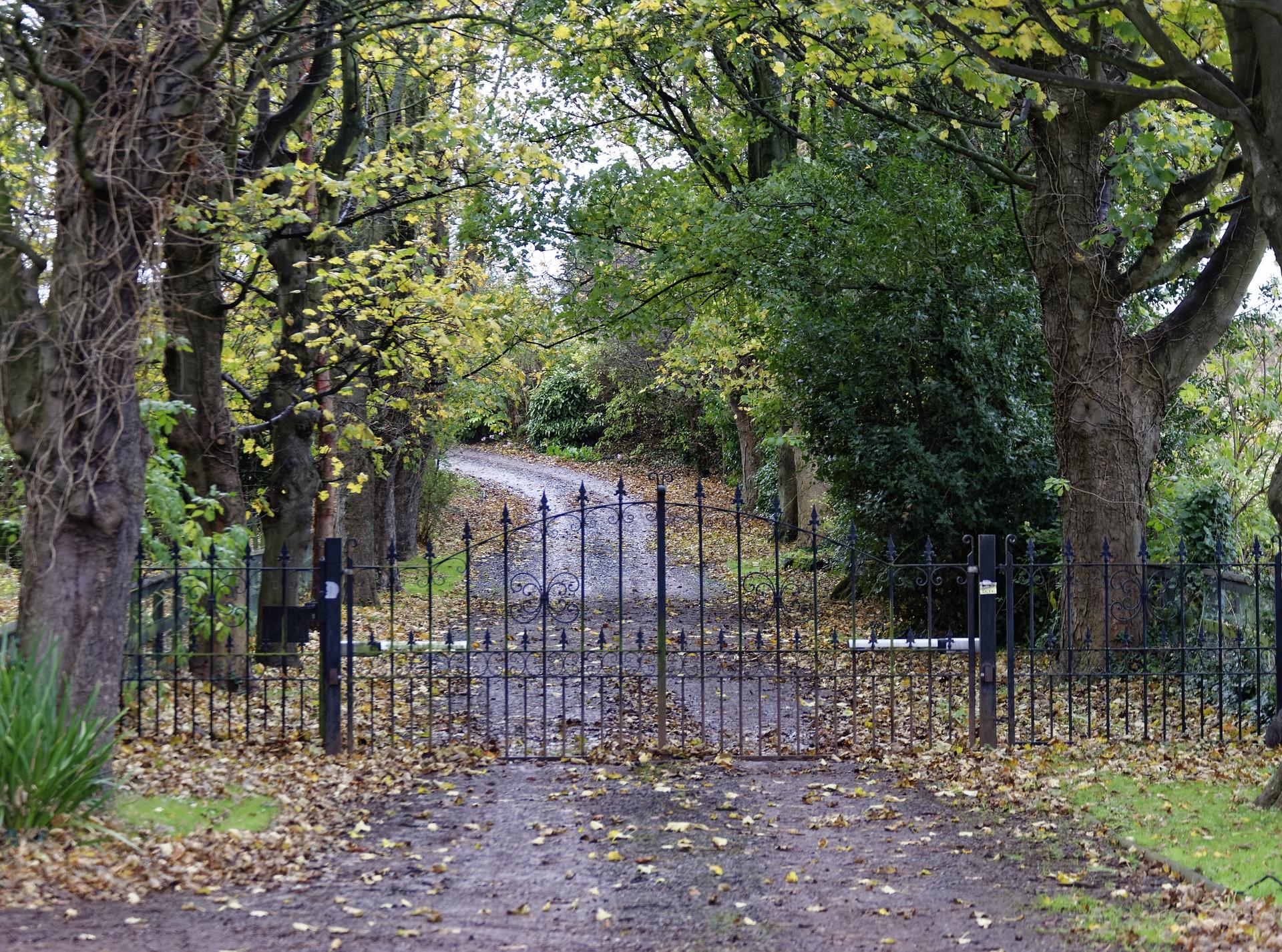 Driveways - Gravel vs Asphalt