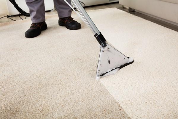 Resale Prep With Pets - Carpet